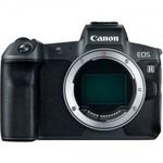 Цифровой беззеркальный фотоаппарат Canon EOS R Body (без адаптера) (Цифровые беззеркальные фотоаппараты)
